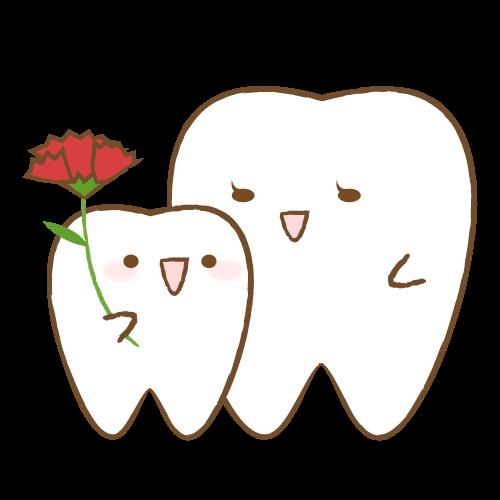 お母さんの前歯